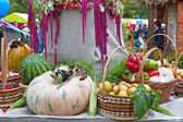 Autumn Harvest festival — Foto de Stock