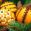 Christmas decoration with oranges and fir tree — Foto Stock