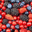 Different fresh berries — Foto de Stock