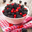 Blackberries and cranberries in a bowl — Foto Stock