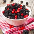 Blackberries and cranberries in a bowl — Zdjęcie stockowe