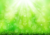Abstract green nature background — Stock Photo