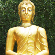 A golden Buddha statue in the garden — Zdjęcie stockowe