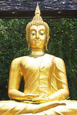 A golden Buddha statue in the garden — Stok fotoğraf
