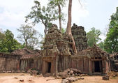 Ta Prohm Temple, Angkor Wat, Cambodia — Stock Photo