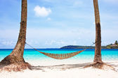 Hammock between palm trees — 图库照片