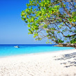Tropical white sand beach arainst blue sky — Stock Photo
