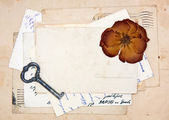 Old letters, empty post cards and dried rose — 图库照片
