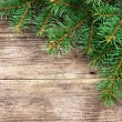 Christmas fir tree on a wooden background — 图库照片