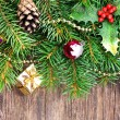 Christmas decoration — Stock Photo #35246329