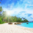 Palm trees in tropical perfect beach — Stock Photo #40580017