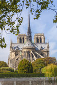 Notre Dame Cathedral as seen from the back — Stock Photo