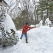 Stock Photo: Shoveling snow