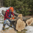 Stock Photo: Cutting wood