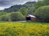 New England covered bridge — Stock Photo