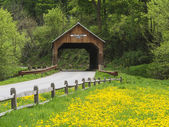 New England covered bridge — Stock Photo