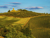 Hills in Tuscany, Italy, during the October grape harvest — Stock Photo