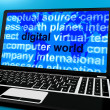 Royalty-Free Stock Photo: Digital World Words On Computer Showing Global Internet