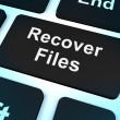 Stock Photo: Recover Files Key Shows Restoring From Backup