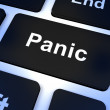 Stock Photo: Panic Computer Key Showing Anxiety Stress And Hysteria