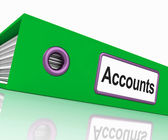 Accounts File Shows Accounting Profit And Expenses — Stock Photo