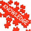 Knowledge Puzzle Showing Intelligence And Wisdom - Stock Photo
