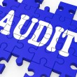 Audit Puzzle Showing Auditor Inspections — Stockfoto #15694919