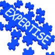 Stock Photo: Expertise Puzzle Showing Excellent Skills