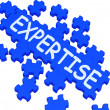 Expertise Puzzle Showing Excellent Skills - Stock Photo
