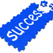 Success Puzzle Shows Accomplishment And Successful Business — Stock Photo #15695375