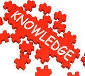 Knowledge Puzzle Showing Intelligence And Wisdom — Stock Photo