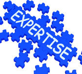 Expertise Puzzle Showing Excellent Skills — Stock Photo