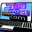 Stock Photo: Domains On Laptop Showing Internet Websites