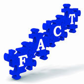 Fact Puzzle Shows Truth And Reality — Stock Photo