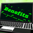 Stock Photo: Benefits On Laptop Showing Monetary Compensations