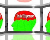 Intelligence On Brain On Screen Showing Human Knowledge — Stock Photo