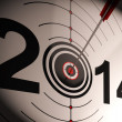 2014 Projection Target Shows Profit And Growth — Stock Photo #21245409
