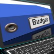 Budget File On Laptop Showing Financial Report — Stockfoto
