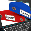 Income And Expenses Files On Laptop Shows Budgeting — Stock Photo #21245677