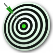 Bulls eye Target Shows Perfect Accuracy And Focus — Stock Photo
