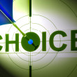 Choice Shows Life Decision Of Work Home — Stock Photo #21852573