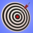 Bulls eye Target Shows Precise Winning Strategic Goal — Stock Photo
