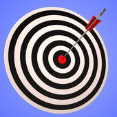 Bulls eye Target Shows Precise Winning Strategic Goal — 图库照片