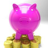 Piggybank On Coins Showing Savings — Stock Photo