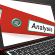 Analysis File On Laptop Showing Analyzed Data — 图库照片