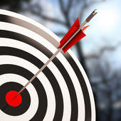 Bulls eye Shot Shows Excellence And Skill — Stock Photo