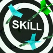Skill On Dartboard Shows Competencies — Stock fotografie
