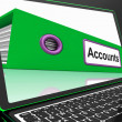 Stock Photo: Accounts File On Laptop Shows Accounting