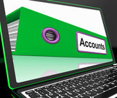 Accounts File On Laptop Shows Accounting — Stock Photo