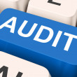 Audit Key Means Validation Or Inspectio — Stockfoto